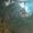 Дымосос ДН-11, 2 недорого #1528014